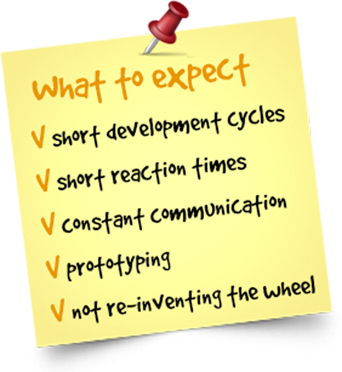 Agile: short cycles, short reaction times, constant communication, prototyping, not re-inventing the wheel